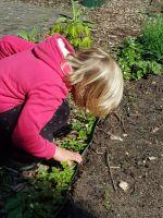 Garteneinsatz_1